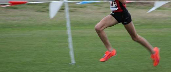 Junior Olympic Cross Country