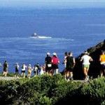 New Course for Big Sur Marathon