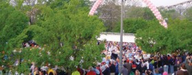 Record Field for Flying Pig 2011