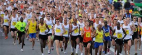 Annual Marathon Report 2013
